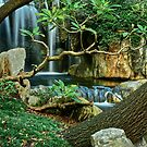 Japanese Gardens. by Julie  White