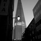 The Shard by Karen Martin