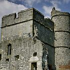 Donnington Castle Close up by James Taylor