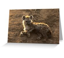 Young Spotted Hyena Greeting Card