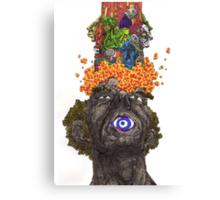 Explodo Canvas Print