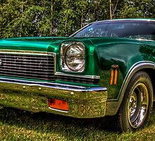 Emerald 454 by Steve Walser