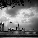 Westminster by Svetlana Sewell