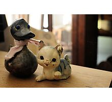 Cat and duck Photographic Print