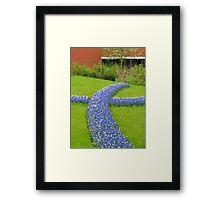 Advance of the Muscari - Keukenhof Gardens Framed Print