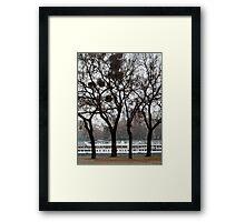 Danube River Bank, Budapest Framed Print