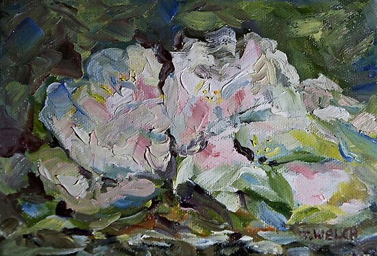 Apple Blossoms by TerrillWelch