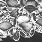 Metalised Orchid Spray by Carole-Anne