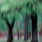 Group of Trees in Motion - green by KUJO-Photo