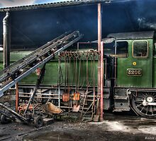 Coaling on the South Devon by David J Knight