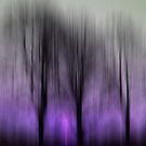 Three Trees in Motion - purple by KUJO-Photo