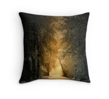 His Glory Throw Pillow