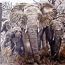 Elephants in the wild by Db Artstudio by Deborah Boyle