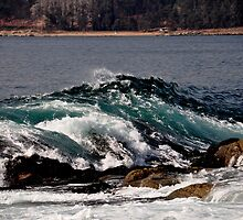 Wave at Papudo Bay, Chile by Daidalos