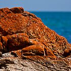 Red Rock on the Coast Victoria, Mornington Peninsula, Australia, Seascape by Ben  Cadwallader