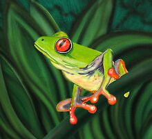 tropical Tree Frog by martycalabrese