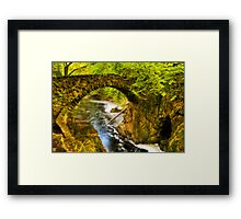 Hermitage Bridge Framed Print