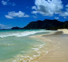 Bellows Beach (Oahu) by ZWC Photography