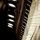 Harmonium (iPhone case) by SunDwn