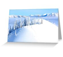 Trees on Whitepass Greeting Card