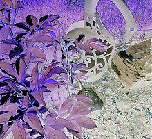 Night Garden by Linda Bianic