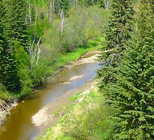 Whitemud Creek in spring by Jim Sauchyn
