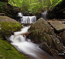 Below R. B. Ricketts Falls by Tim Devine