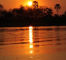 Okavango in Orange by Jennifer Sumpton