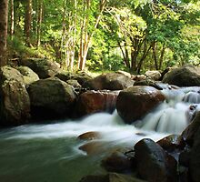 korrumbyn creek ... by gail woodbury