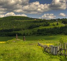 Countryside 3 by Richard Fortier