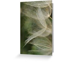Salsify Seeds Greeting Card