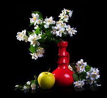 Jasmine bouquet in the vase on black background by torishaa