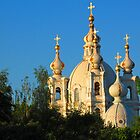 Sun Sets on the Smolny by Mary-Elizabeth Kadlub