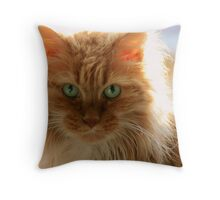 It Is Good To Be Cat Throw Pillow