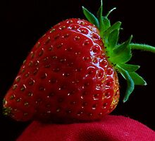 OREGON FRESH STRAWBERRY by RoseMarie747