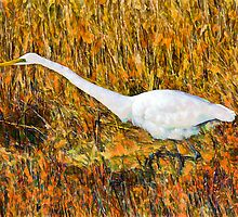 Stalking Great Egret by Lightengr