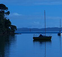 Morning light, Bay of Islands, New Zealand.......! by Roy  Massicks