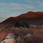 Grasslands of the Eastern Cape by Kenji Ashman