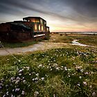 Barge Past by Andy Freer