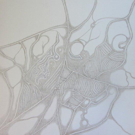 "Organic Maps - ""Juliasdale"" by Katie Grubb"