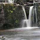 Aysgarth - V Falls 2 of 3 by Harry Purves
