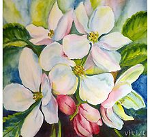 flowers of apple tree by Victoria  _Ts