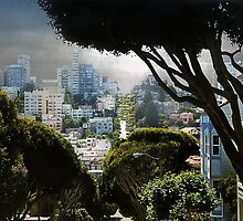 Landscape on Lombard Street, San Francisco by Elizabeth Bravo
