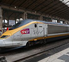 SNCF TGV 3313 at Gare Du Nord Station in Paris, France. by Keith Larby