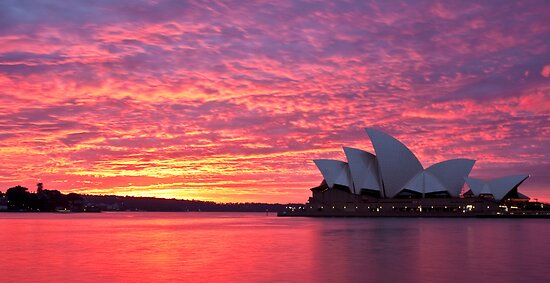 Sublime Sydney Sunrise by Liz Percival