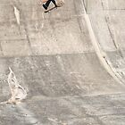 Barry Mansfield, fs flip. by Luke Carl Thompson
