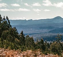 Looking North from Black Spur road 1959 10260005 by Fred Mitchell