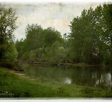 Elbow River by Olga