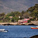 Chile, Bay of Papudo, by Daidalos