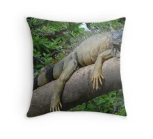 Iguana royal at the River Cuale Throw Pillow